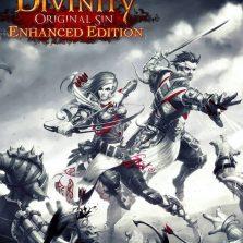 Divinity_Original_Sin_Enhanced_PC